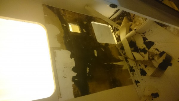 Further Damage Confirmed Bathroom Wall & Timbers To Be Replaced.